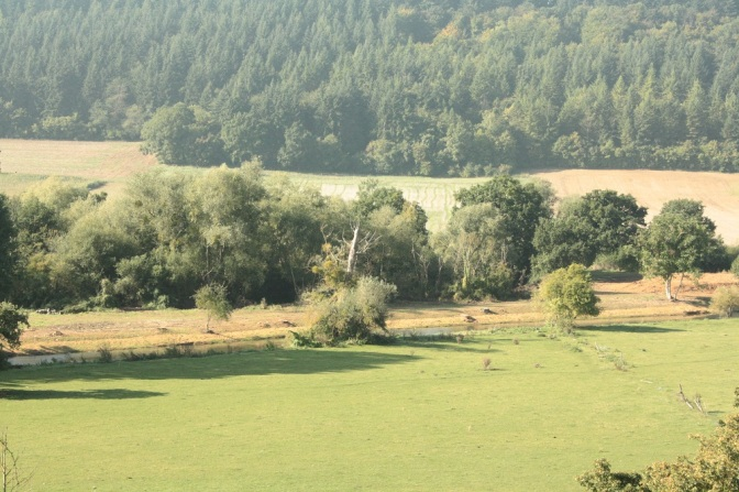 Restauration de berge sur la commune de Normanville