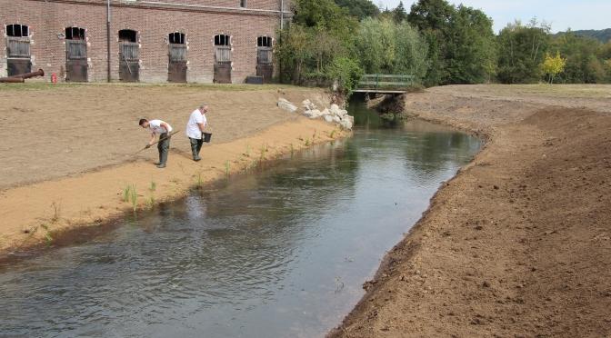 Restauration de berges au moulin de Navarre