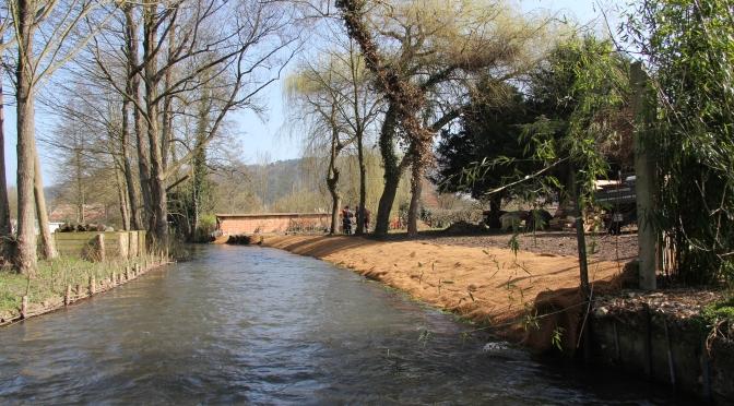 Restauration de berge commune de Brosville