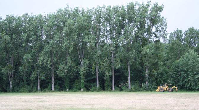 Restauration de la ripisylve -Parc de Navarre- Evreux – PARTIE 1
