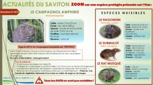 Pour plus d'informations : www.gmn.asso.fr